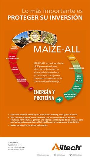 maizeall-1.jpg