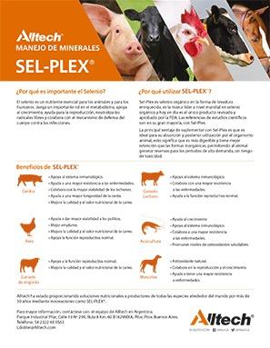 selplex1-1.jpg