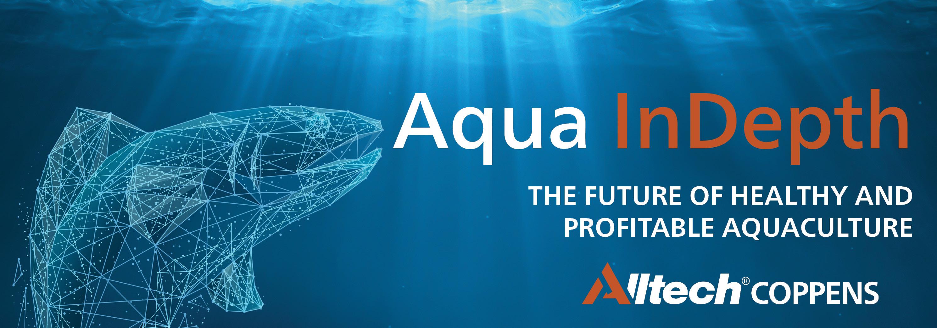 8681_ Aqua Indepth landing page header with logo