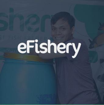 efishery.jpg