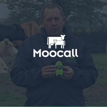 moocall.jpg