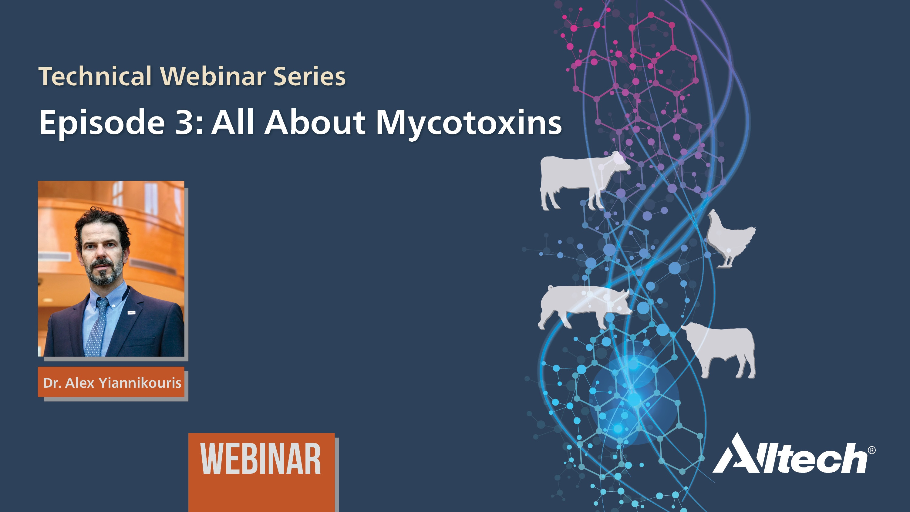 All about mycotoxins - widescreen PPT v2.jpg