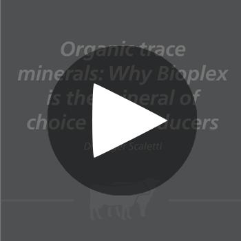 Bioplex_play_button