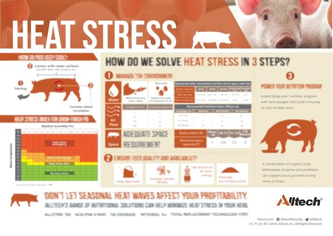 Heat_stress_infographic-BLURRED-1.jpg