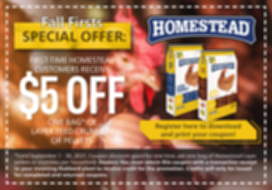 Homestead-Layer_Sept-Coupon-_-blurgrapic