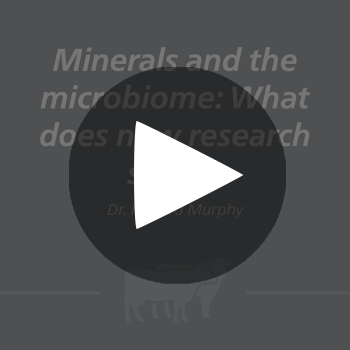 MineralsMicrobiome_play_button