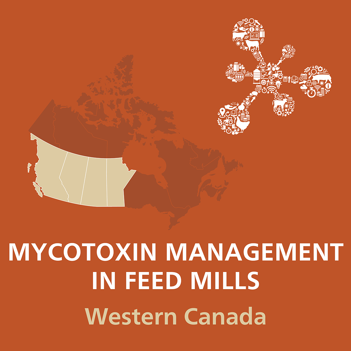 Mycotoxin-Management-in-Feed-Mills