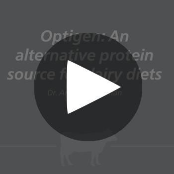 Optigen_dairy_play_button