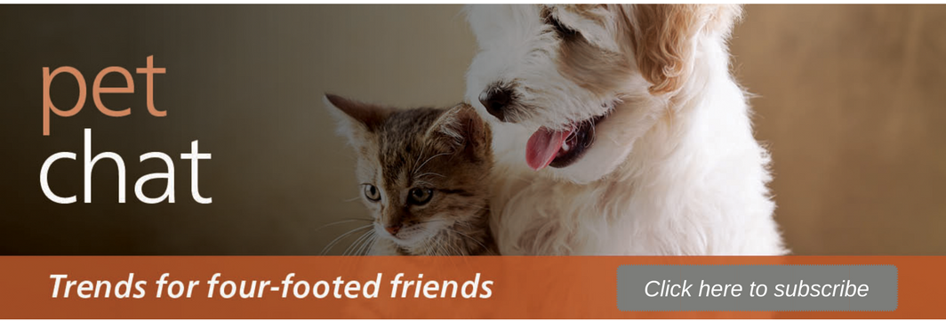 Pet Chat Header w Button.png
