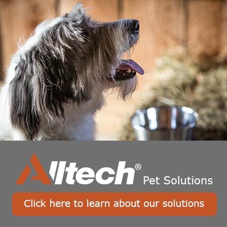 Pet Landing Page- Solutions.jpg
