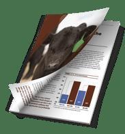 ProgressiveCattleman-Booklet-Blueprint-v3_graphic_small