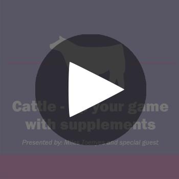 Show-Rite-CattleUp_playbutton