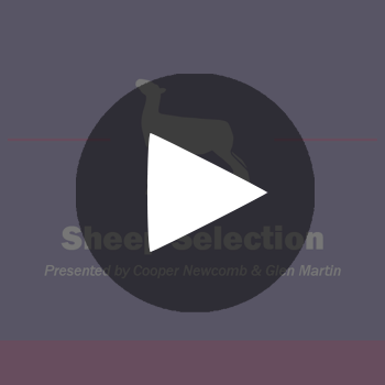 Show-Rite-Stock-Show-Classroom-Webinar-Button-_-Sheep-Selection_playbutton