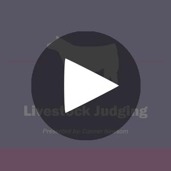 Show-Rite_LivestockJudging_playbutton