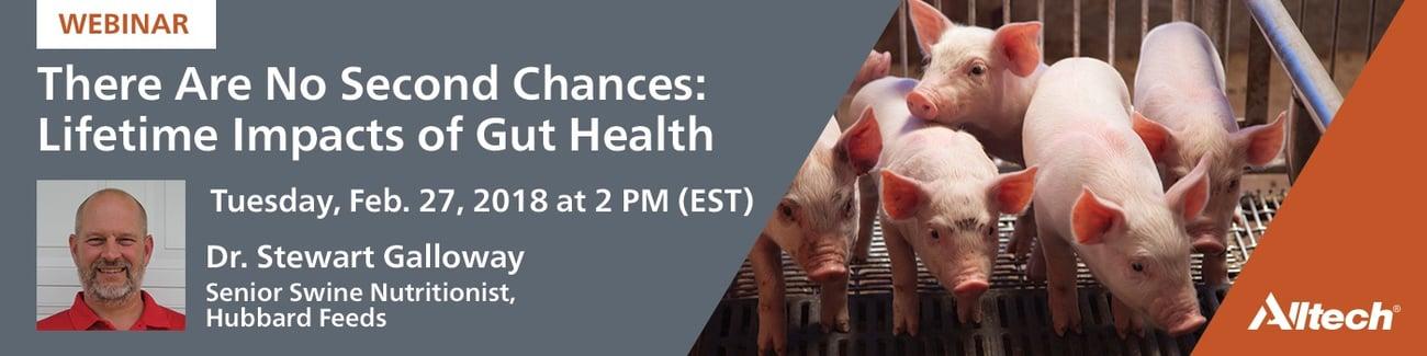 Webinar Banner-Pig Gut Health .jpg