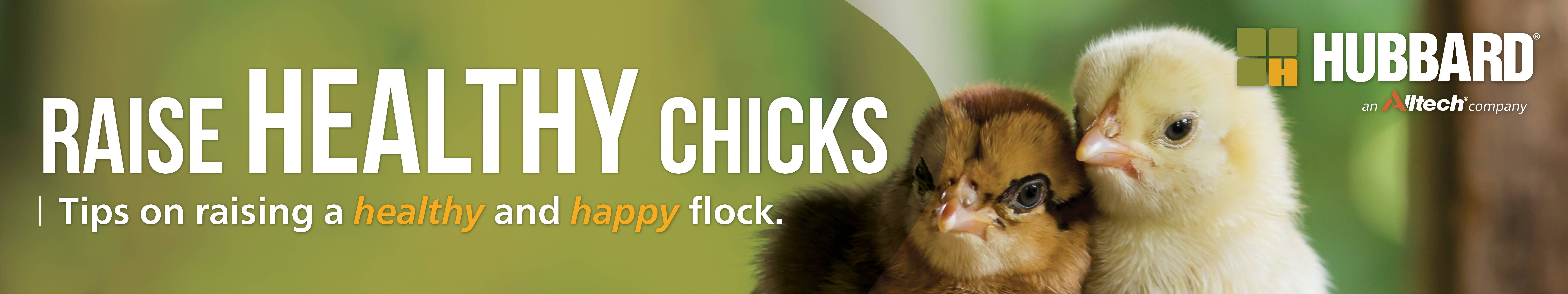 Chick Days_COVID Campaign_2000x375