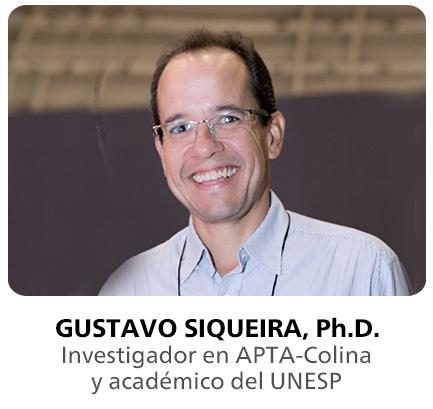 GUSTAVO SIQUEIRA