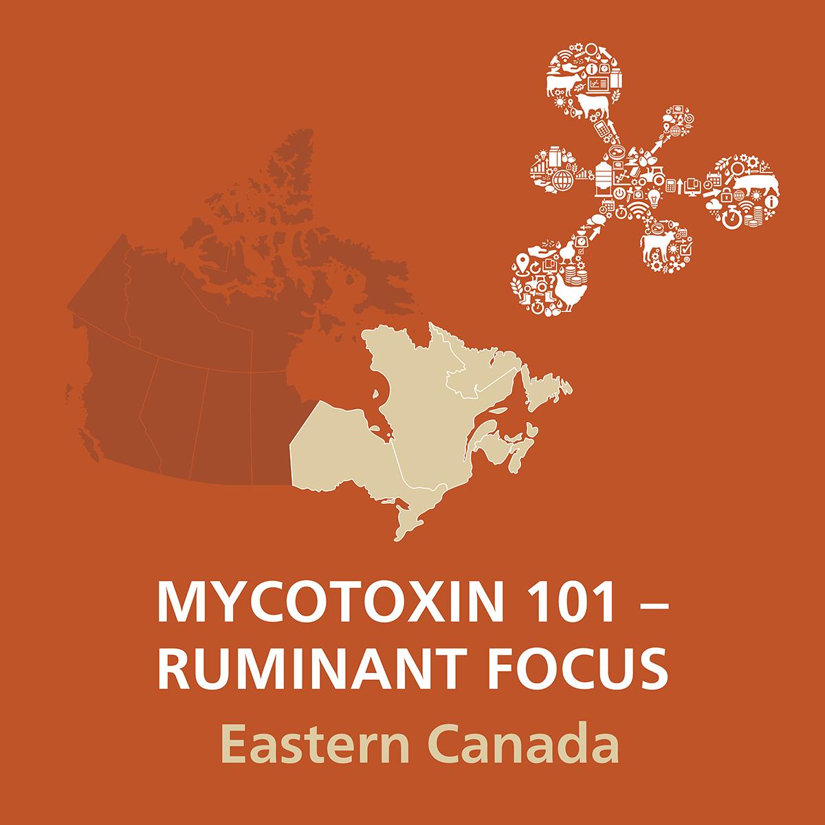 Mycotoxin101_RuminantFocus_EasternCanada