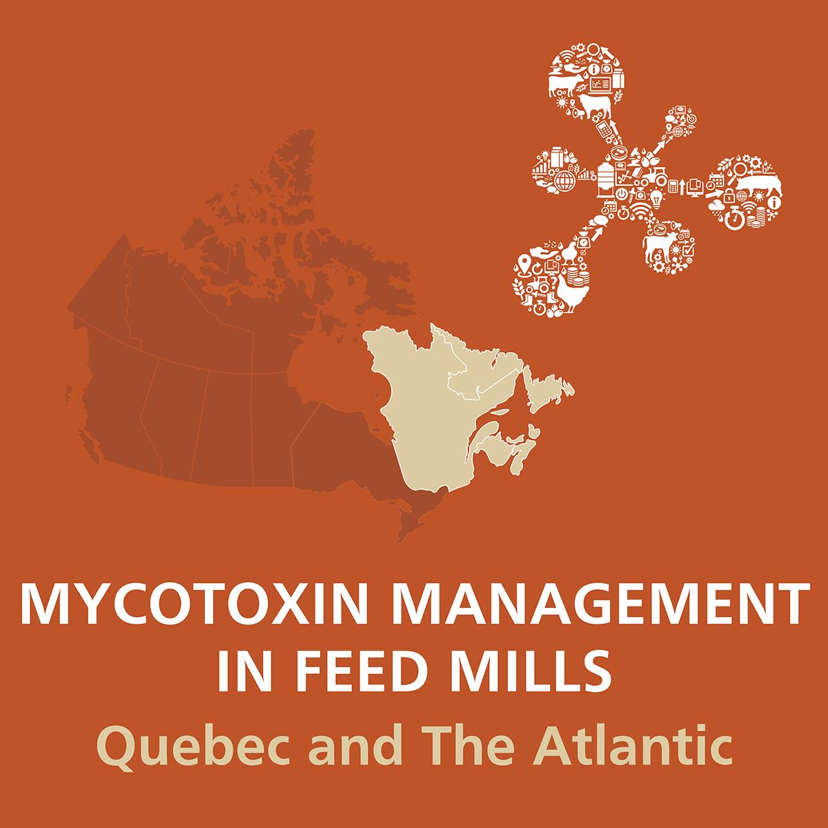 MycotoxinManagementFeedMills_QA