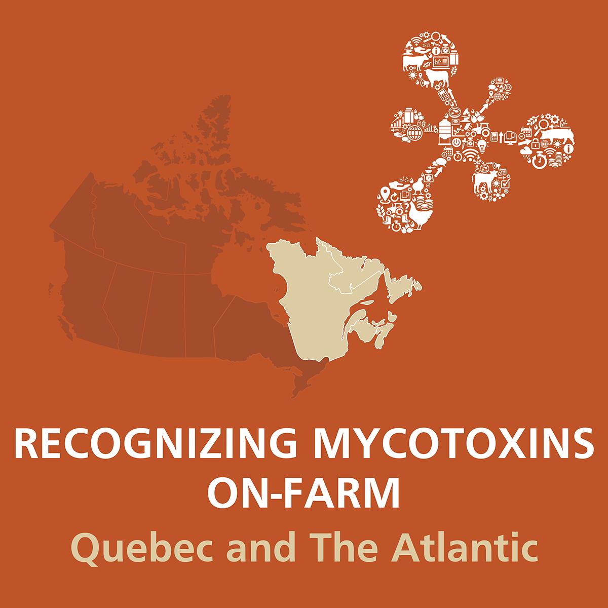 Recognizing-Mycotoxins-On-Farm